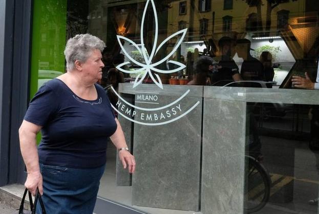 hemp embassy, negozio di marijuana a milano