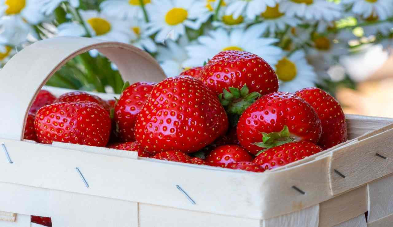 Fragole dolce frolla ricetta