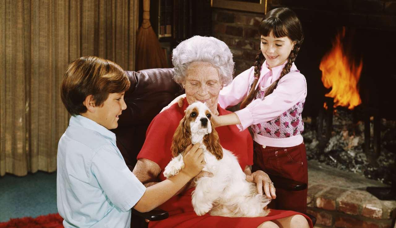 Bonus nonni: quali i requisiti e come richiederlo all'Inps