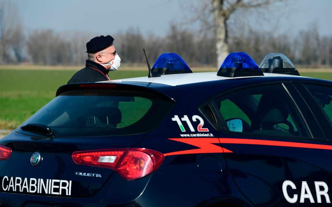 Auto investe alcuni cinghiali, 2 morti e 1 ferito sull