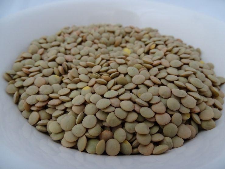 lenticchie per polpette