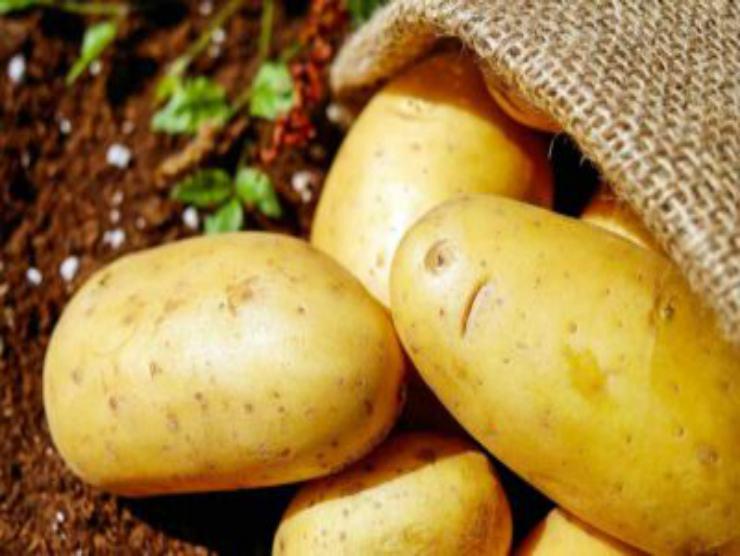 Polpette di patate e melanzane: ricetta sfiziosa ed allettante