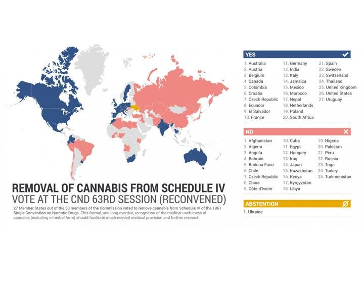 cannabis paesi votanti