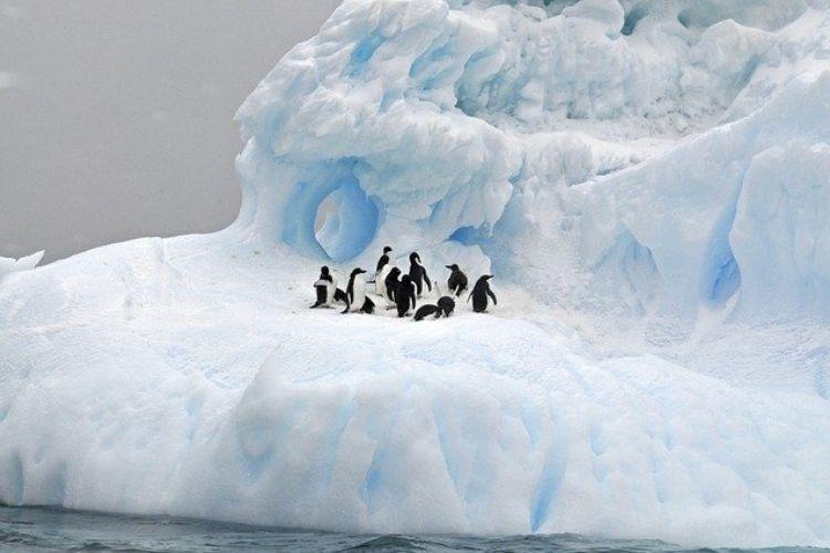 iceberg a68a atlantico meridionale georgia del sud